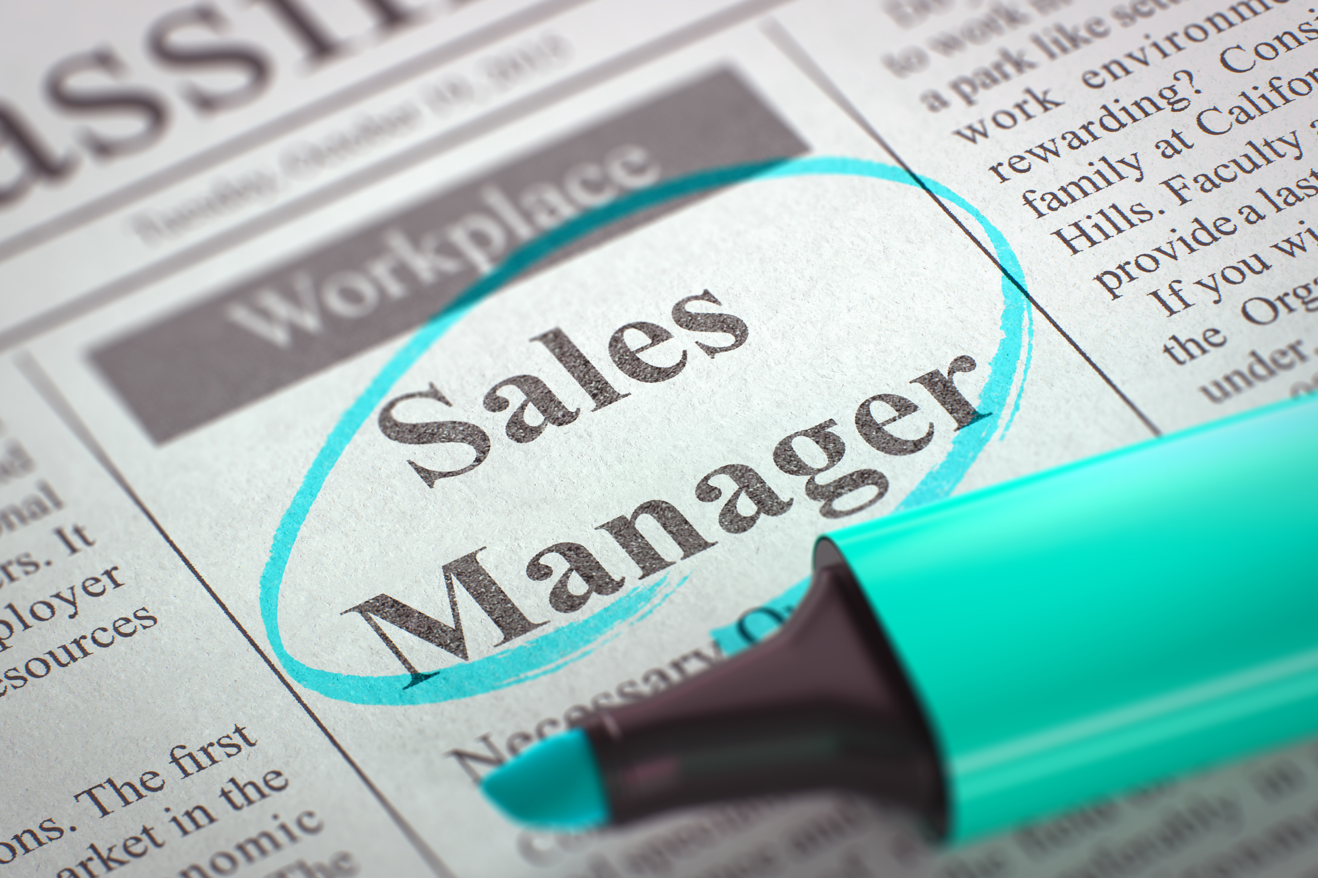 SALES MANAGER for the LITHUANIAN market